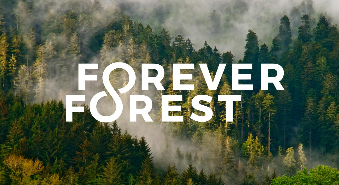 Forever Forest Campaign