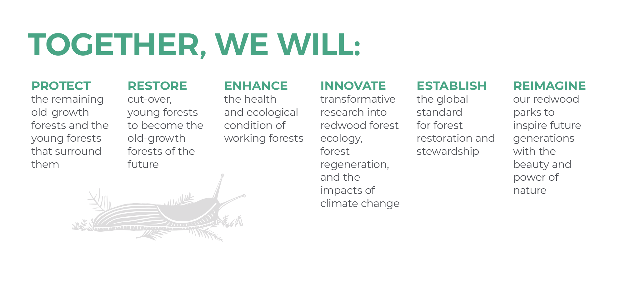 Forever Forest Campaign Goals