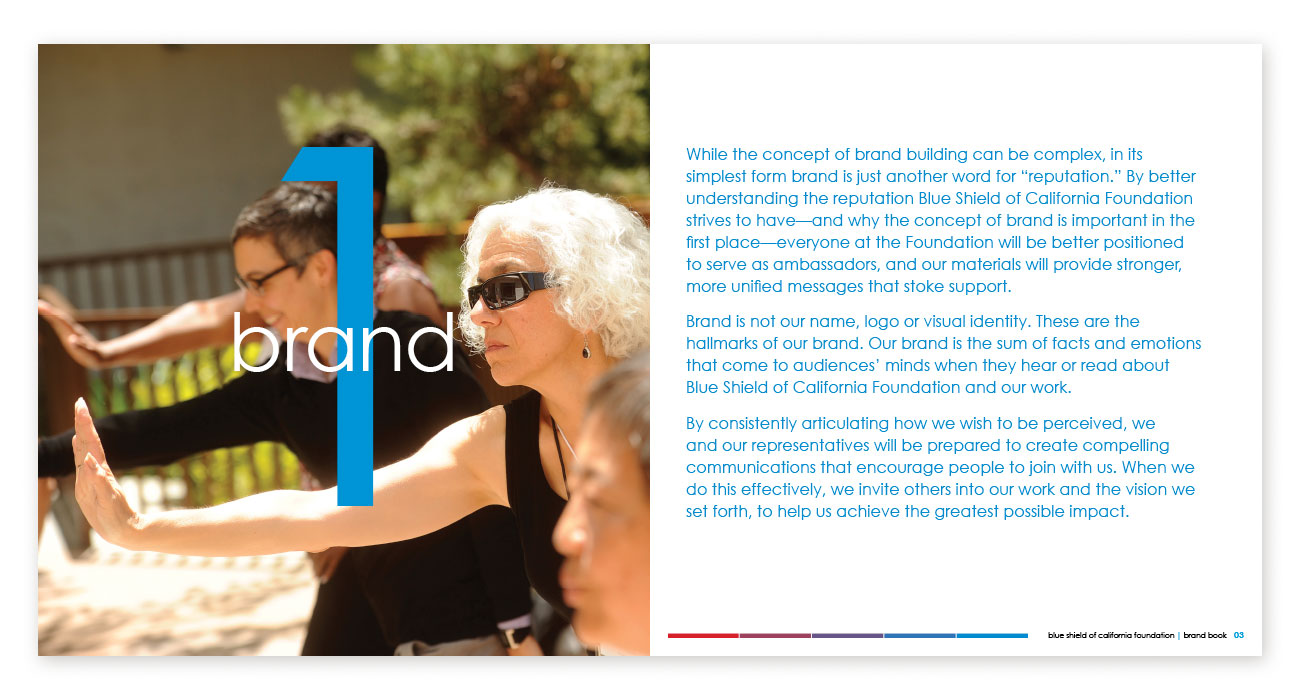 Blue Shield of California Foundation Brand Book Chapter Break