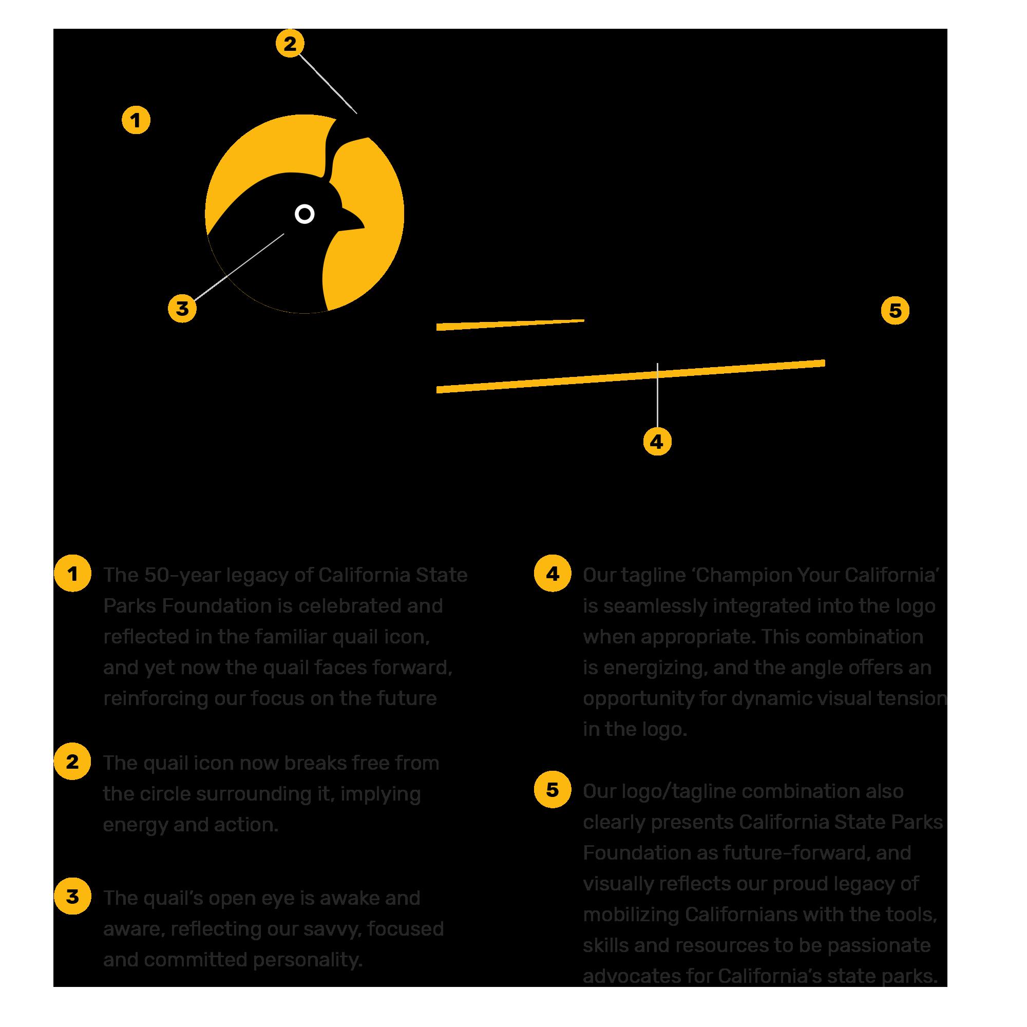CSPF_Logo_Anatomy