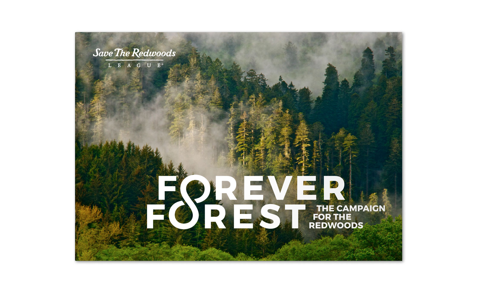 Forever Forest Brochure Cover